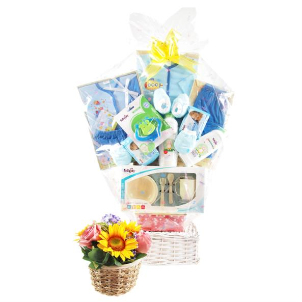 Singapore best beauty and fashion blog janiqueel to welcome a new baby shower the family with simple yet valuable baby shower gift a baby hamper of baby gifts like in that flower shop is an ideal choice negle Gallery